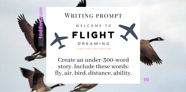 toddwe.com writing prompt #14. Create an under-300-word story. Include these words: fly, air, bird, distance, ability.